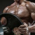 How to Utilize Legal Steroids?
